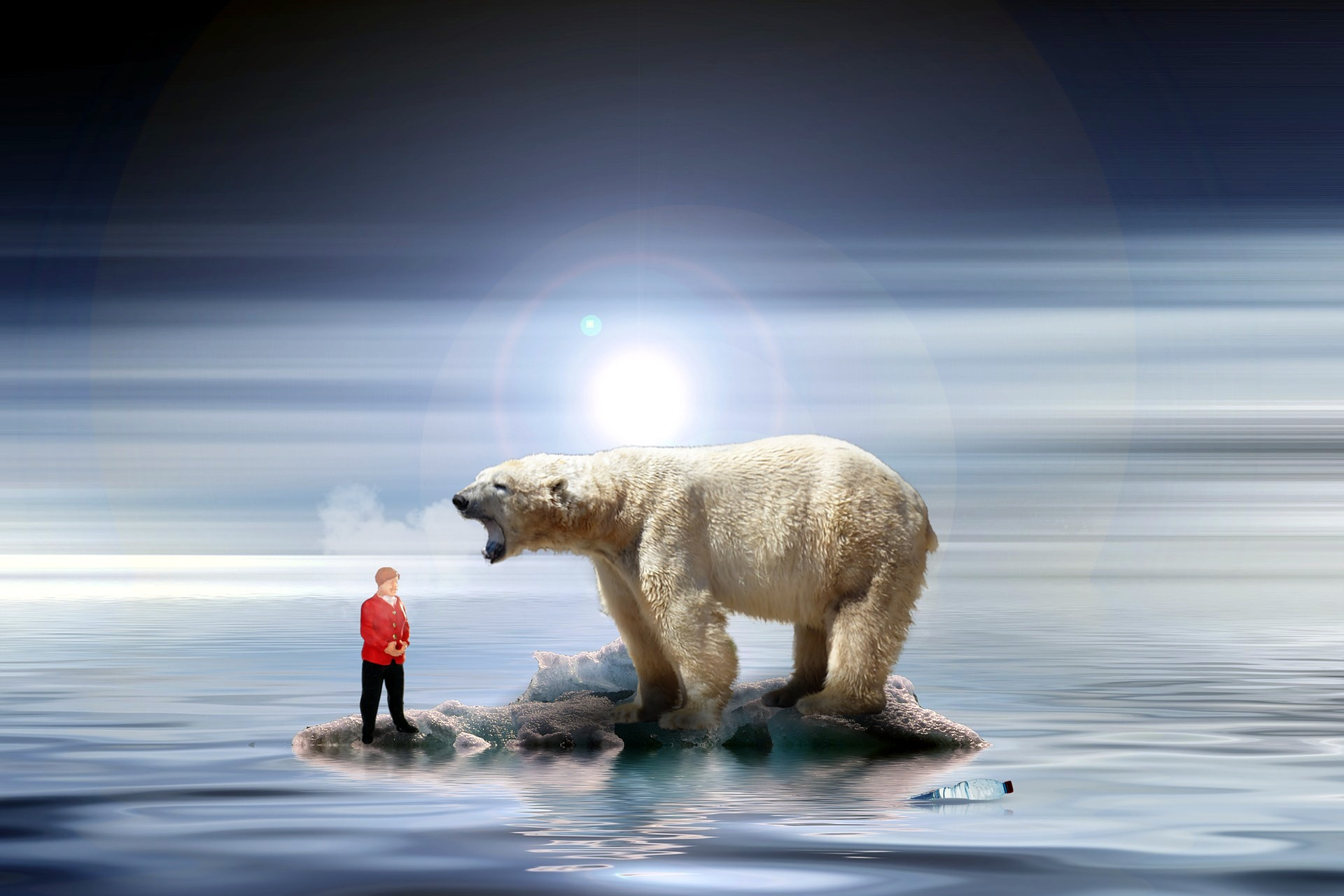 cambio climatico osos polares
